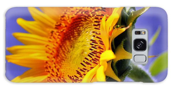 Golden Sunflower Galaxy Case by Judy Palkimas