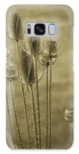Golden Thistles Galaxy Case