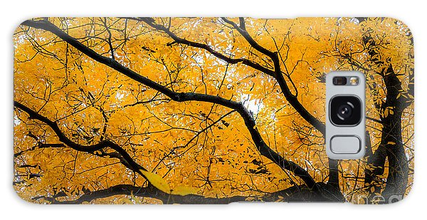 Golden Tree Galaxy Case