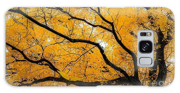 Golden Tree Galaxy Case