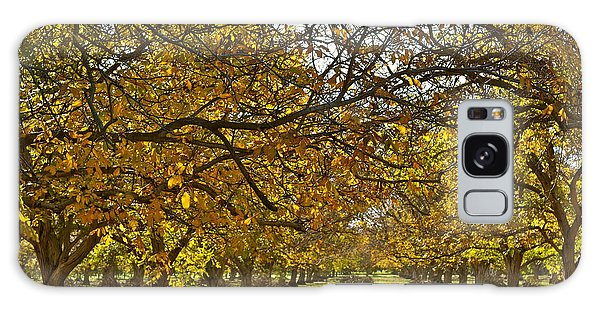 Golden Walnut Orchard Galaxy Case