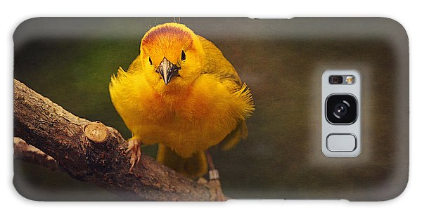 Golden Weaver Bird Galaxy Case