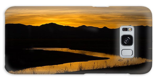 Golden Wetland Sunset Galaxy Case