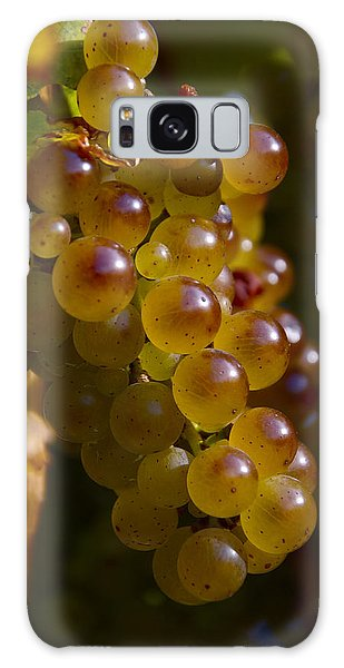 Golden Wine Grapes Galaxy Case