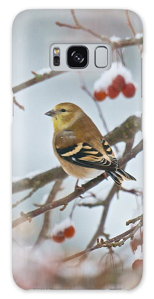 Goldfinch In Snow Galaxy Case