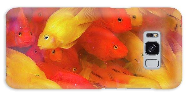 Goldfish At Goldfish Market, Hong Kong Galaxy Case