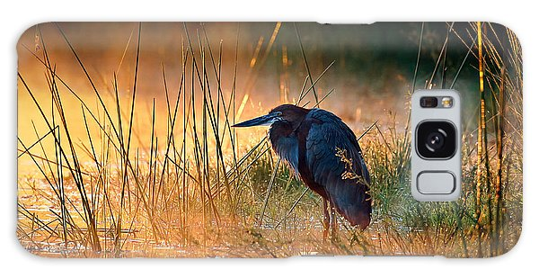 Goliath Heron With Sunrise Over Misty River Galaxy Case