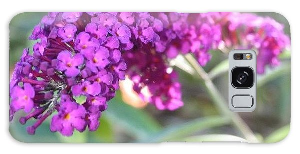 Good Morning Purple Butterfly Bush Galaxy Case