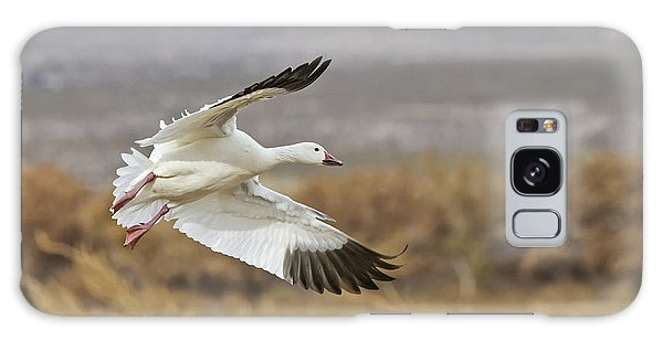 Goose Above The Corn Galaxy Case by Ruth Jolly