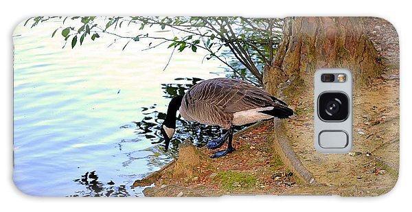 Goose Drinking From A Pond Galaxy Case by James Potts