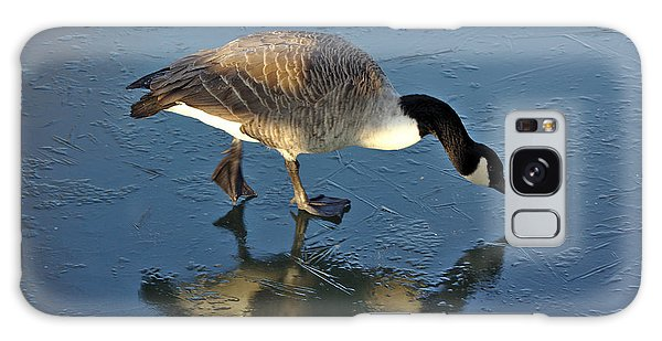 Goose On Ice Galaxy Case