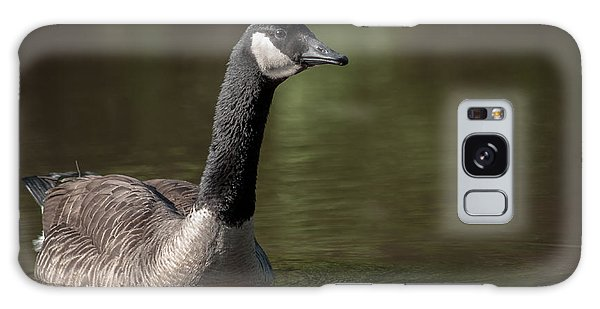 Goose On Pond Galaxy Case by Len Romanick