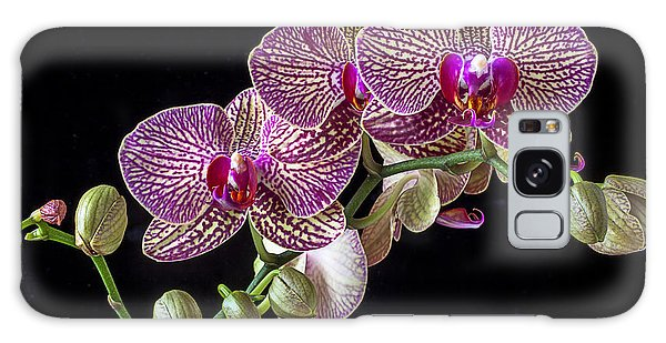 Orchidaceae Galaxy Case - Gorgeous Orchids by Garry Gay