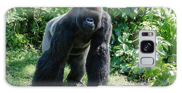 Gorilla In The Midst Galaxy Case