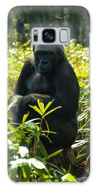 Gorilla Sitting On A Stump Galaxy Case