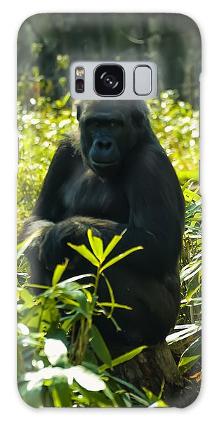 Gorilla Sitting On A Stump Galaxy Case