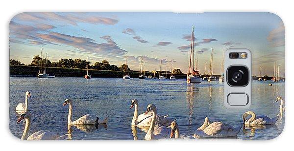 Swan Boats Galaxy Case - Graceful Swans by David Pyatt