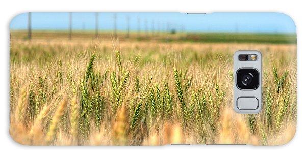 Grain Field - Hdr Photo Galaxy Case