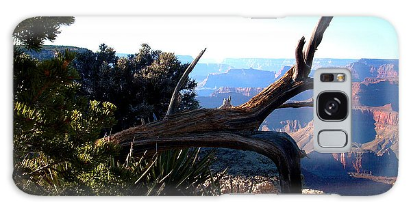 Grand Canyon Dead Tree Galaxy Case
