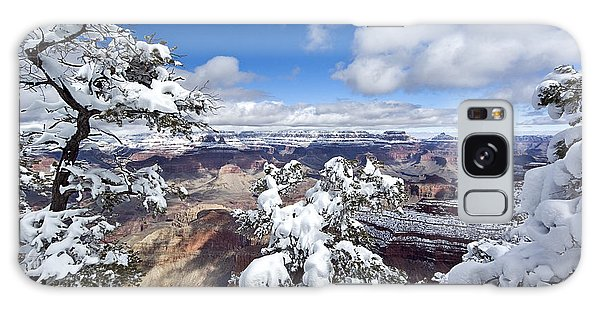 Grand Canyon Winter - 1 Galaxy Case