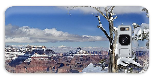 Grand Canyon Winter -2 Galaxy Case