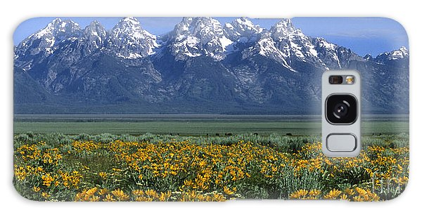 Teton Galaxy Case - Grand Teton Summer by Sandra Bronstein