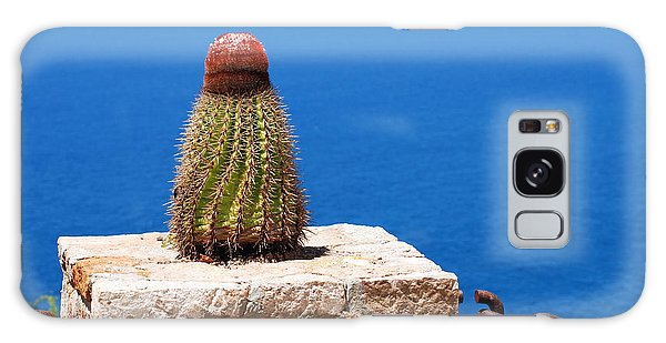 Grand Turk Cactus Galaxy Case