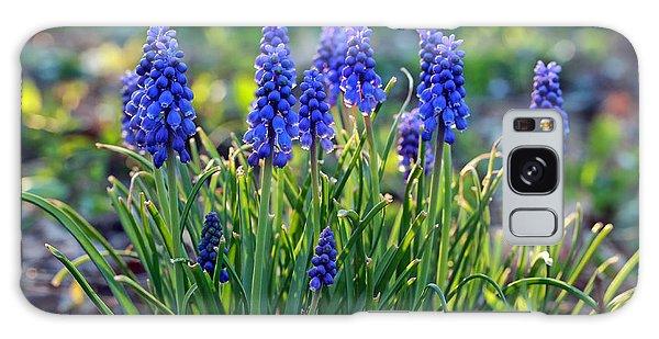 Grape Hyacinths Galaxy Case