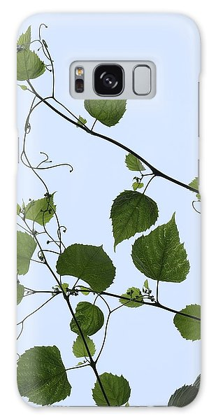 Grape Vine And Sky Galaxy Case