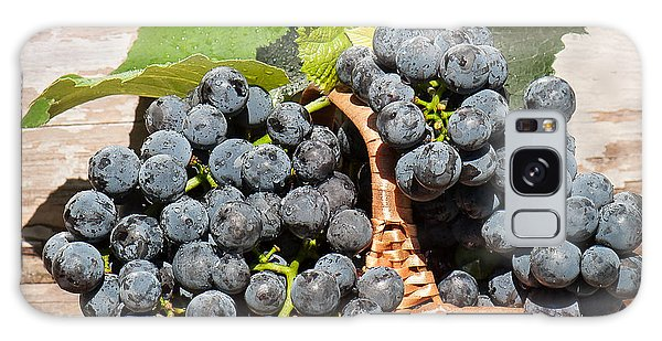 Grapes And Leaves In Basket Galaxy Case by Len Romanick