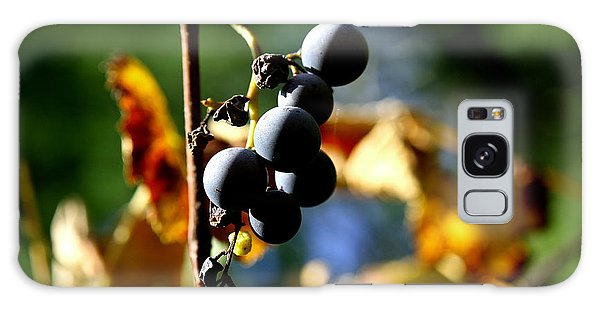 Grapes On The Vine No.2 Galaxy Case by Neal Eslinger