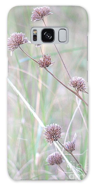 Grasses And Seeds Galaxy Case