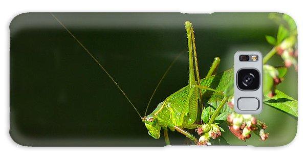 Grasshopper #1 Galaxy Case