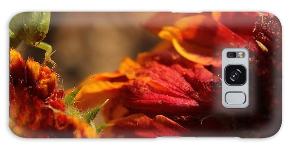 Grasshopper In The Marigolds Galaxy Case by Joel Loftus