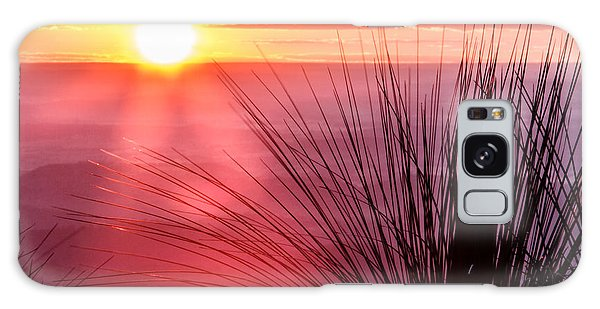 Grasstree Sunset Galaxy Case by Peta Thames