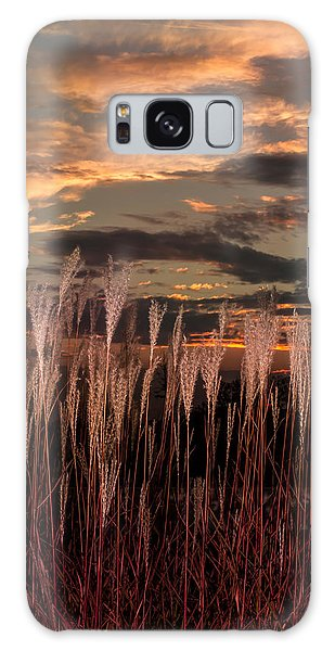 Grassy Sunset Galaxy Case