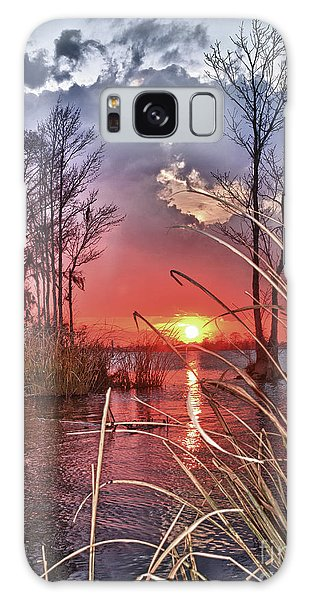 Grassy View Sunset Galaxy Case