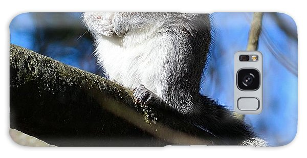 Gray Squirrel Galaxy Case