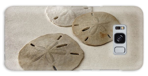 Gray Taupe And Beige Sand Dollars Galaxy Case by Brooke T Ryan