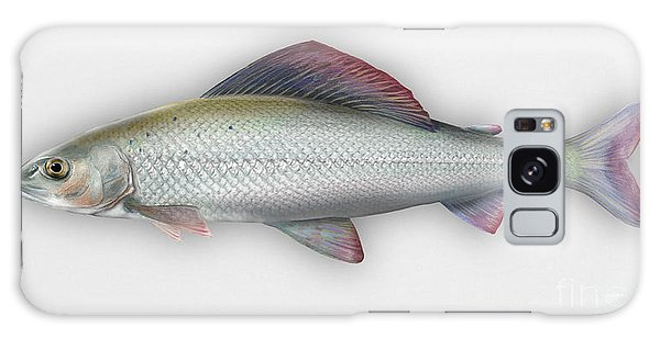 Grayling - Thymallus Thymallus - Ombre Commun - Harjus - Flyfishing - Trout Waters - Trout Creek Galaxy Case