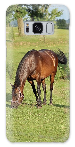 Grazing Mare Galaxy Case by Lorna Rogers Photography