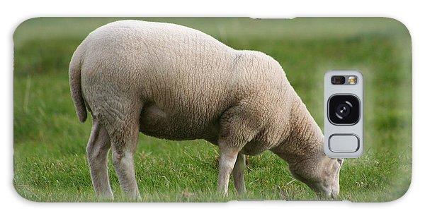 Grazing Sheep Galaxy Case