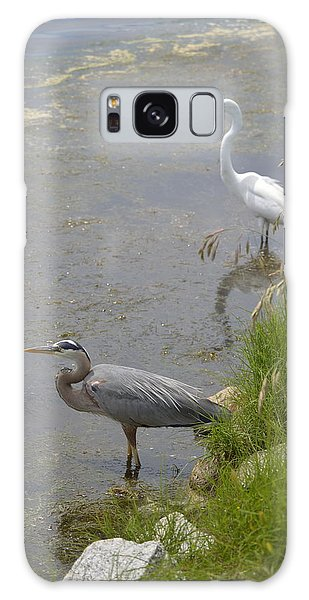 Great Blue And White Egrets Galaxy Case