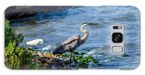 Great Blue Heron And Snowy Egret At Dinner Time Galaxy Case