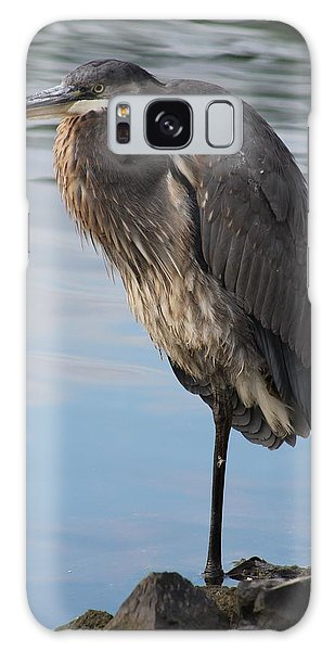 Great Blue Heron At Deep Water Lagoon Galaxy Case