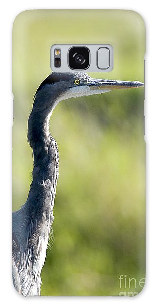 Great Blue Heron Backlit Galaxy Case