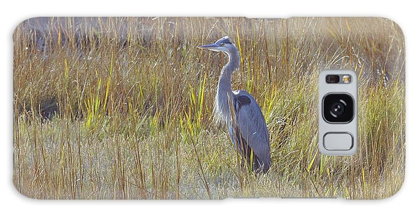 Great Blue Heron Standing Tall Galaxy Case