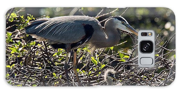 No-one Galaxy Case - Great Blue Herons by Bob Gibbons