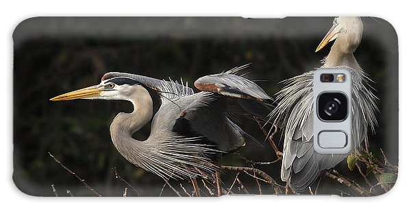 Great Blue Herons  Galaxy Case