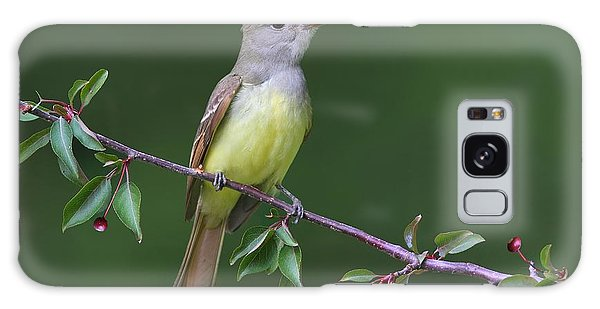 Great Crested Flycatcher Galaxy Case by Daniel Behm